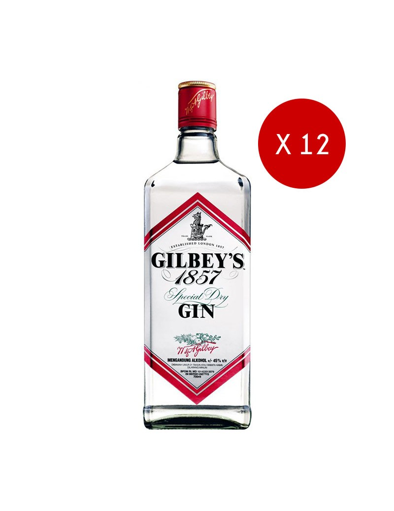 Gin Gilbey's x 12